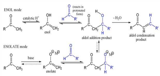 Aldol Condensation | Chemistry Science Fair Project