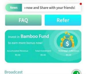 bambooglobalization com